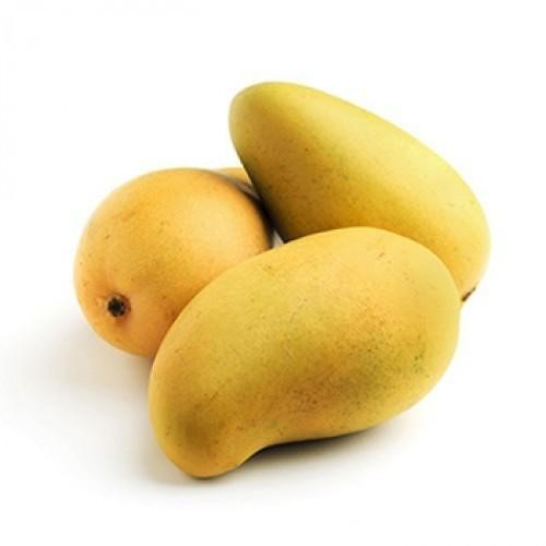 King Kesar Mango 1